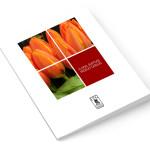 Catalog-Picture