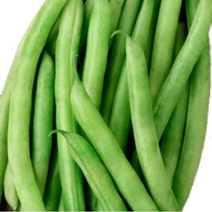 Beans, Blue Lake Stringless