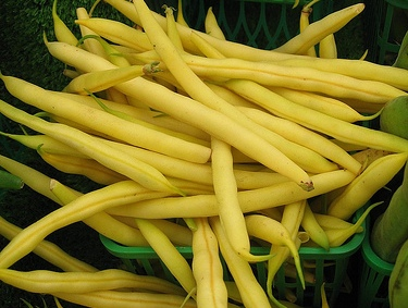 Beans, Bush - Yellow Podded (Wax)
