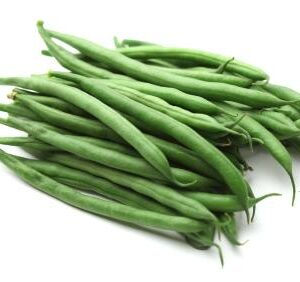 Bean Tendergreen Improved 54 Days American Seed Co