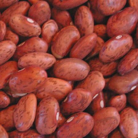 Beans, Pinto