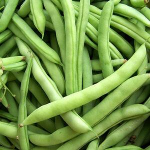 Beans, White Half Runner