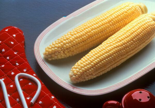 Sweet Corn, Bodacious