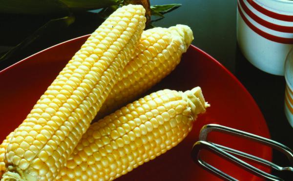 Sweet Corn, Sugar Buns
