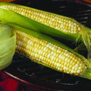 Sweet Corn, Trinity