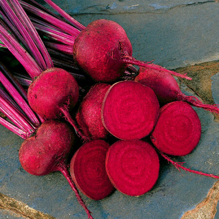 Beets, Red Ace