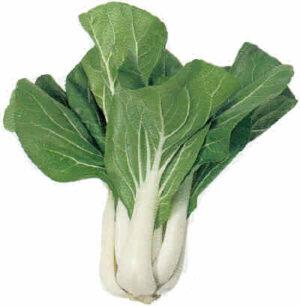Cabbage, Pak Choi