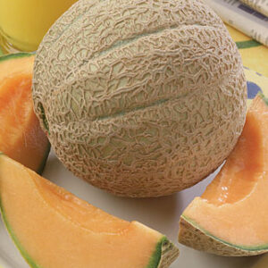 Cantaloupe or Muskmelon