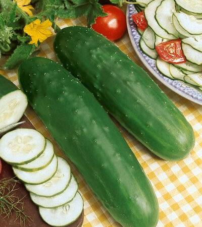 Cucumbers, Marketmore 76