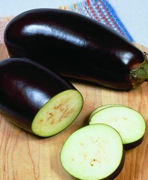 Egg Plant, Black Beauty