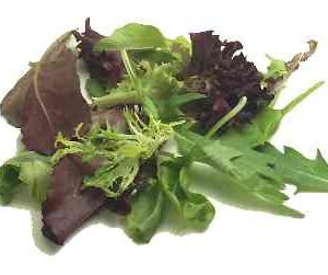 Lettuce, Loose Leaf Salad Mix
