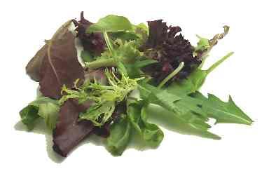 Lettuce, Loose Leaf Salad Mix