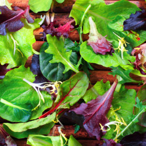 Lettuce, Spring Spinach Salad Mix