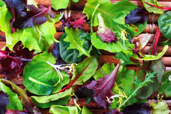 Lettuce, Spring Spinach Salad Mix