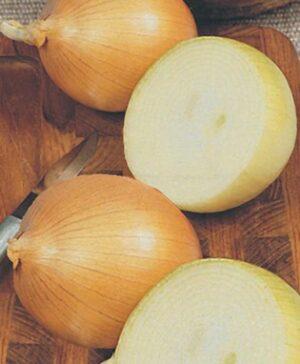 Onion, Candy