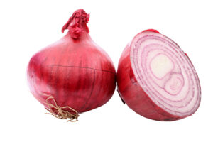 Onion, Red Burgandy