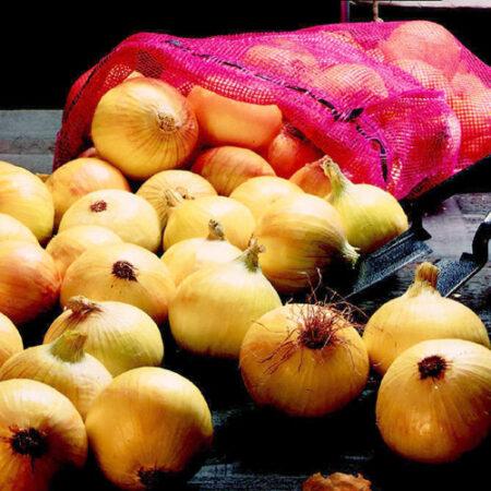 Onion Sets, Super Sweet