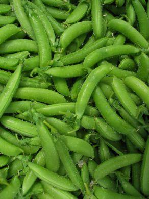 Peas, Sugar Ann