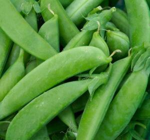 Peas, Sugar Snaps