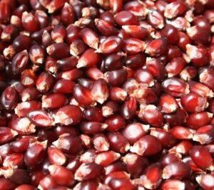 Popcorn, Ruby Red