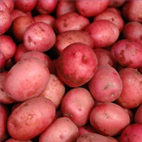 Potatoes, Red Pontiac