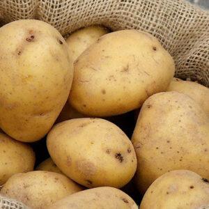 Potatoes, Superior