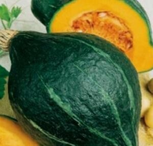 Squash - Winter Varieties