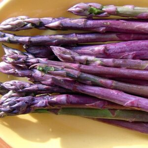 asparagus roots purple passion