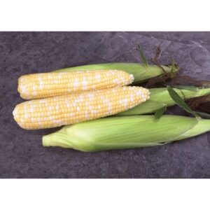 Remedy corn